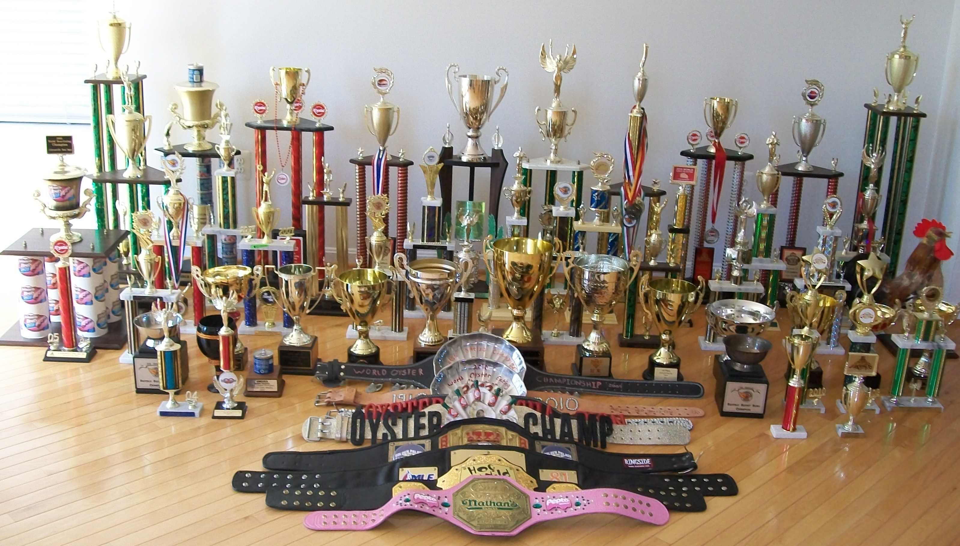 Just_Me/Sonya_Trophies_10-09-14.jpg